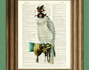 The Falconer Falcon and feathered hood illustration beautifully upcycled dictionary page book art print