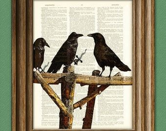 Crow Art Print A Murder of Crows illustration Animal Groups Collection upcycled dictionary page book art print