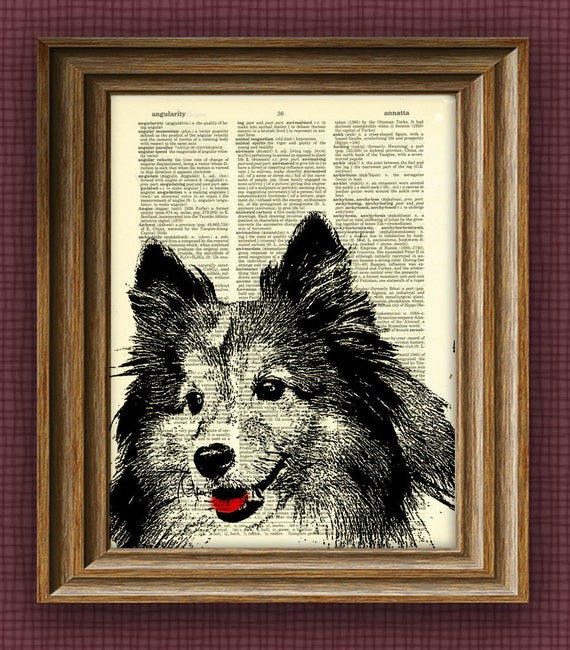 Shetland Sheepdog SHELTIE dog beautifully upcycled vintage dictionary page book art print