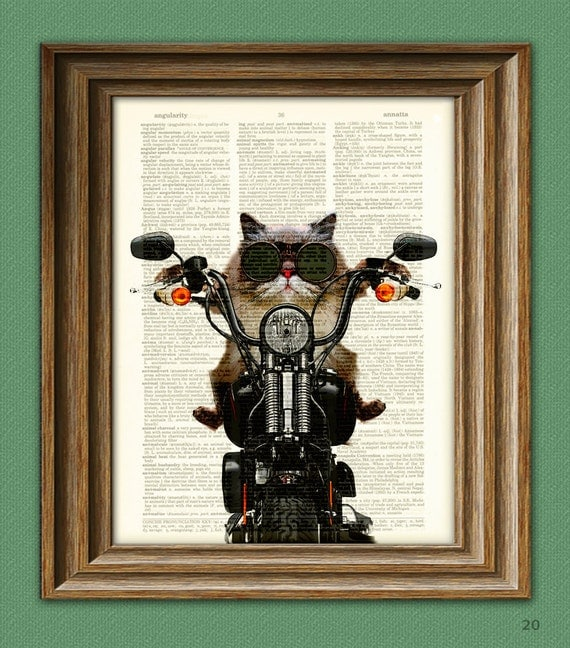 Roxie Rawr Motorcycle Cat illustration beautifully upcycled dictionary page book art print