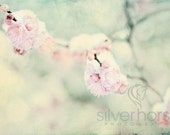 Pink flower buds peeking out from under the winter snow pink green grey tan pearl 5x7 Fine Art Photography Print