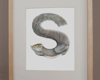 S is for Squirrel - PRINT