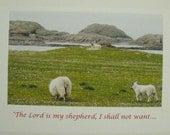 Green Pastures - Sympathy Card