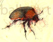 beetle print, halloween decor, Chinese longhorn beetle, drawing, art print, BalletArt, insect, red orange, beetle poster, illustration