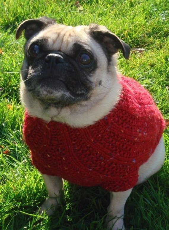 The Shorty - Red Dog Sweater XXS