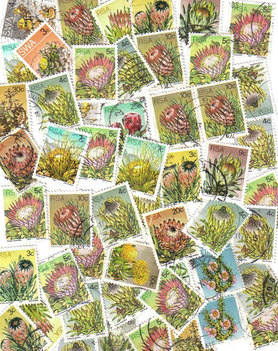 50 Gorgeous flower used postage stamps from South Africa