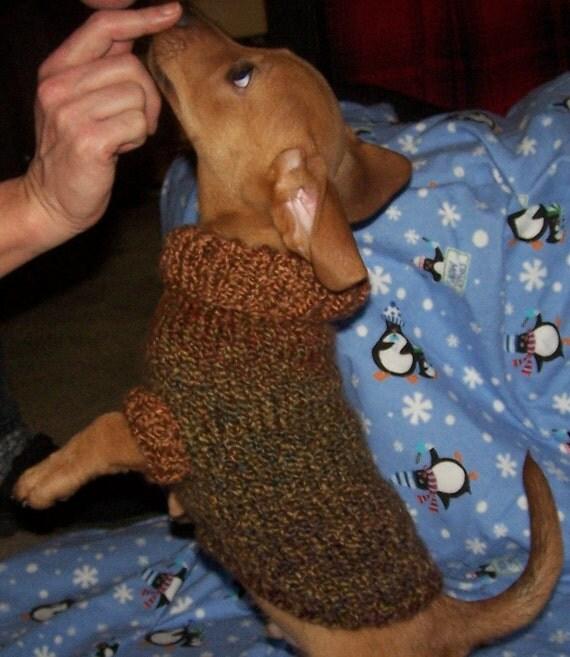 Dog Sweater Patterns Lookup Beforebuying