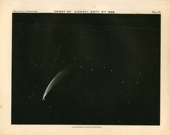 1892 comet of donati original antique celestial astronomy print