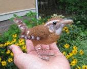 Mr. Carolina Wren, needle felted bird