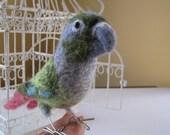 Mr. Green Cheeked Conure, needle felted bird fiber sculpture