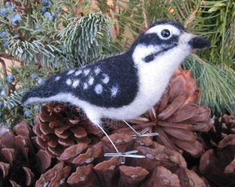 Mr. Downy Woodpecker, needle felted bird fiber art sculpture