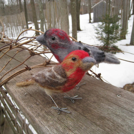 Mr. House Finch, needle felted bird