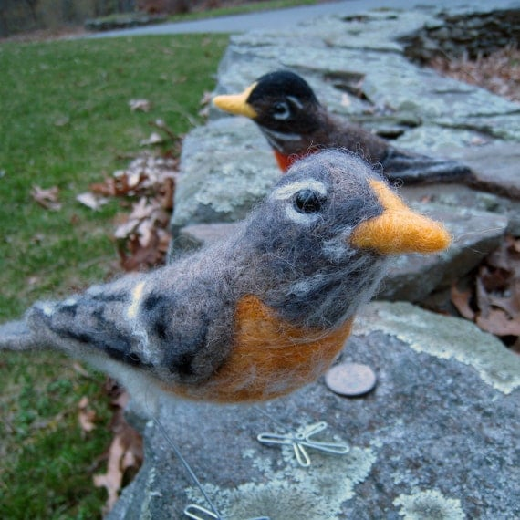 Mrs. American Robin, needle felted bird art fiber sculpture
