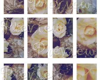 Digital Collage Sheet 1x2 inch Rectangles - Roses