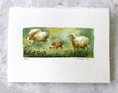 Sheep Original Watercolor Art Card For Sale