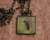Hummingbird  Glass Pendant/Necklace Nature