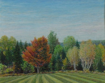"Art Original Oil Pastel Drawing Fall Landscape Country Field Tree Forest Eastern Townships Appalachian Quebec Canada By Audet "" Furrow """