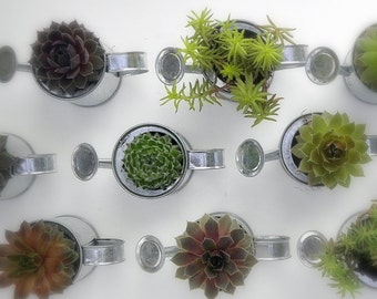 Succulent Watering Can Favor, A sample to Try before you Buy.