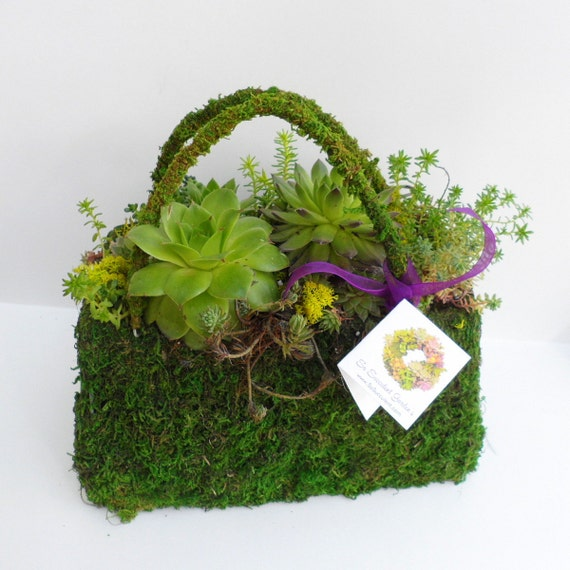 Succulent Stuffed Purse - Centerpiece for Showers, garden party, red hat society
