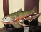 Brook trout fish art James Weed
