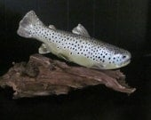 Brown trout 11 inch fish creation by James Weed log cabin, office decor fly fishing fathers day gift