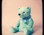 Teddy Bear - Art Print