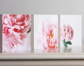 Peony Series Set of 3 Photo Blocks