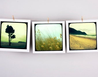 Set of 3 fine art photographs