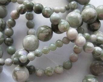 4mm Peace Jade Round Beads - 16 inch strand