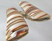 Vintage Earrings Lucite Tiger Stripes Shell
