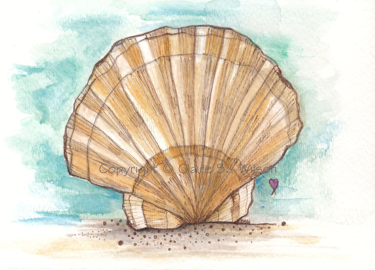 Seashell Art Print 8x10