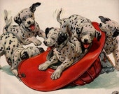 vintage puppies dalmatians dogs 1954 advertisement texaco
