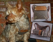 Gangs of New Yorkie Personalized Dog Harness - 'Pound' Lettering