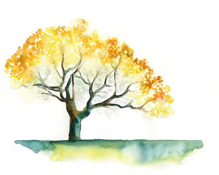 Yellow tree Print from my original watercolor painting by Ireart: https://www.etsy.com/listing/92439810/yellow-tree-print-from-my...
