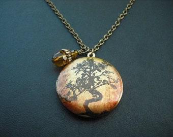 Bonsai Tree locket necklace