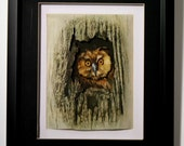 Owl in tree set in shadowbox frame.