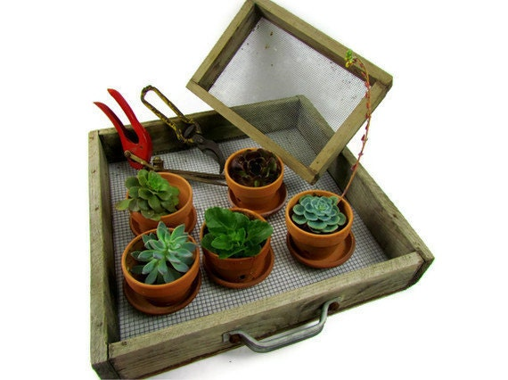 Rustic garden trays vintage wood and wire sifters