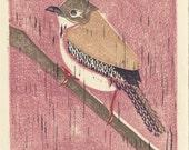 HOUSE WREN - Original Hand-Pulled Linocut Illustration Art Print 5 x 7, Pink, Brown, Nature, Home Decor