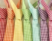 Gingham Little Boys Neckties - Pick your favorite color in any size