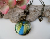 Noble Peacock - Altered Art Photo Locket with Brass Beaded Chain