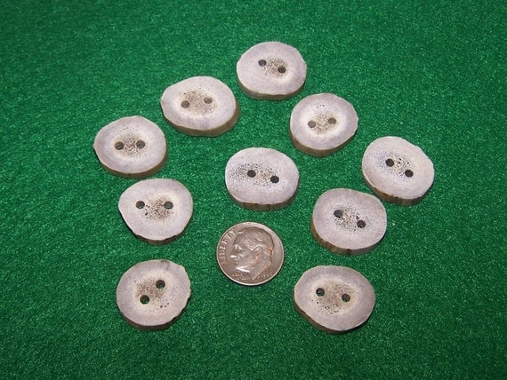 10 Antler Buttons lot 30