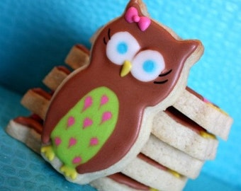 Hoot Hoot Party Owl cookie favors - one dozen