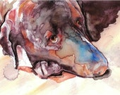 Chocolate Lab --Artist Signed Watercolor Print