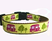 Free Spirit Medium Dog Collar
