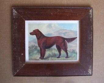 Dog K-9 Print Reclaimed Wood Frame Old