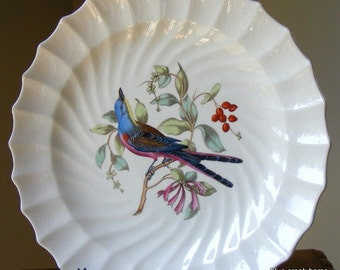 Discontinued Spode Scissor Tailed Flycatcher Plate