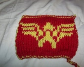 Wonder Woman Pot Holder