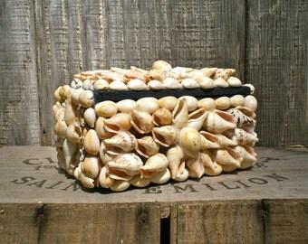 Vintage Sea Shell Box . Trinket Box .