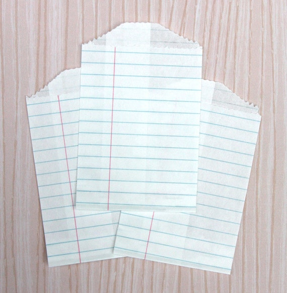Little Notebook Paper Bags (20)