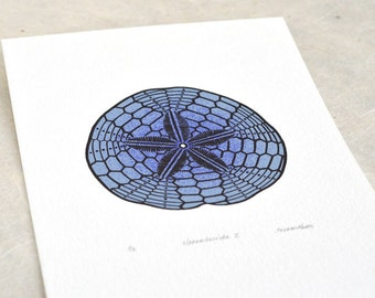 Sand Dollar / Clypeasteroida II 'specimen' (dark) - Limited edition three-colour screenprint